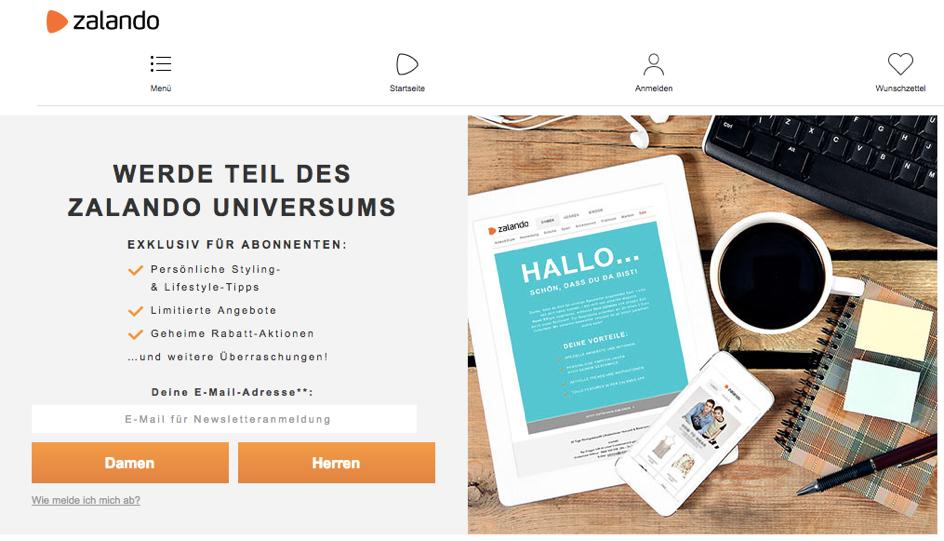 E-Mail Marketing Lead-Magneten finden